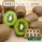 千葉農園のキウイフルーツ(7〜10玉)