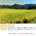 お米 令和元年産 3種食べ比べ はえぬき 山形95号 あきたこまち 3kg×3種 計9kg 精米 真空パック おこめ 山形県舟形町産