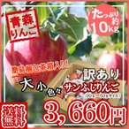 【予約】【送料無料】【たっぷり!てんこ盛り約10kg】青森県産訳ありサンふじりんご約10kg  りんご/リンゴ/訳あり/家庭用/わけあり
