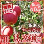 【随時発送】【送料無料】【たっぷり!てんこ盛り約10kg】青森県産訳ありサンふじりんご約10kgトレイ入り  りんご/リンゴ/訳あり/家庭用/わけあり