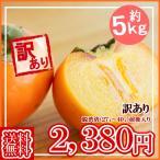 【予約】【送料無料】山形産庄内柿(しょうないがき)訳あり約5kg11月上旬頃より順次発送予定!
