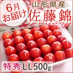 さくらんぼ 佐藤錦 山形県産 特秀LL詰500g 手詰め 送料無料