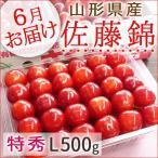 さくらんぼ 佐藤錦 山形県産 特秀L詰500g 手詰め 送料無料