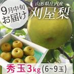 和梨 刈屋梨 秀玉(しゅうぎょく) 約3kg (玉数おまかせ) 生産元直送の為同梱不可 希少な和梨 送料無料