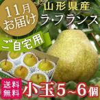 ラフランス 山形県産ラフランス食べ切りセット(秀L5〜6個)  送料無料  フルーツ