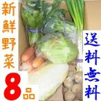 山口・九州産【送料無料】 『新鮮野菜の詰め合わせ8種類』(じゃがいも・ほうれん草・ピーマン・人参・キャベツ他)