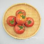 熊本県産『トマト』【野菜詰め合わせセット同梱で送料無料】