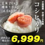平成29年産新米 千葉県産コシヒカリ 一等米 玄米20kg 送料無料 玄米10kg(精米は4.5kg×4袋) 精米 つきたて発送 小分け