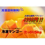 冷凍マンゴーダイスカット5KG(業務用500gx10入り)(2営業日内発送)