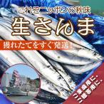 yamakichi_ns3727