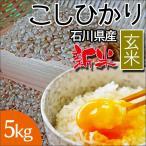 安田商事 新米 令和2年度産 石川県産 コシヒカリ精米 5kg