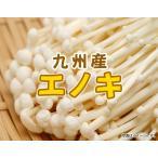 エノキ 3袋  九州産