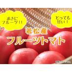 若松フルーツトマト
