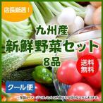 【クール配送】野菜セット 8品店長厳選