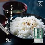 新米 お米 安い 30年度 ふるさと納税で話題の岡山県産こしひかり 5kg 5kg×1袋 送料無料 お米 コシヒカリ 5キロ 一等米