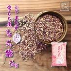 雑穀 30年度岡山県産 紫もち麦(ダイシモチ) もち紫 5kg 送料無料 安い おすすめ ダイエット健康美容 5キロ