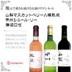 ワイン セット ギフト 岩崎醸造 地元ワイン3色セット(ベリーA 山梨 樽熟成(赤),甲州 シュール・リー(白),ホンジョー 勝沼ロゼ) 1本箱入り