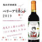 塩山洋酒醸造 ベーリーアリカント 720ml 2018 プレゼ