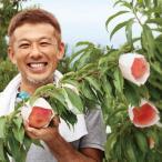 日本一の桃の産地笛吹市から 農業の匠久津間さんの神の貴陽 約1kg(5〜7玉)  プラム 産地直送 7月より順次出荷
