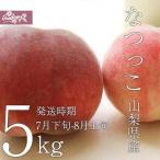 ご予約商品山梨の美味しい桃 なつっこ5kg 15-16個入り (農家産直)(ギフト)(御中元)(桃)(山梨県)(フルーツ)