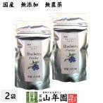【国産】 ブルーベリー粉末 50g×2袋 送料無料