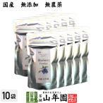 【国産】 ブルーベリー粉末 50g×10袋 送料無料