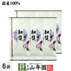 知覧茶 100g×6袋セット 日本茶 お茶 煎茶 茶葉 送料無料 国産 緑茶 お茶 お歳暮 ギフト プレゼント 内祝い お返し