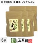 健康茶 えごま茶 2g×10パック×6袋セット 国産100% 無農薬 ノンカフェイン 島根県産 送料無料