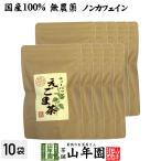 健康茶 えごま茶 2g×10パック×10袋セット 国産100%無農薬 ノンカフェイン 島根県産 送料無料