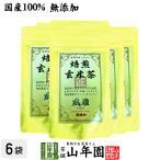 お茶 日本茶 玄米茶 焙煎玄米茶 風雅 ティーパック 7g×10パック×6袋セット 送料無料