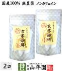 【国産 無添加 100%】玄米珈琲 スティック 2g×12本×2袋 特A北海道産ななつぼし ノンカフェイン