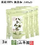 健康茶 ハトムギ茶 7g×24パック×3袋セット ティーパック 国産 鳥取県産はと麦茶 はとむぎノンカフェインティーバッグ 送料無料