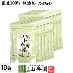 健康茶 ハトムギ茶 7g×24パック×10袋セット ティーパック 国産鳥取県産はと麦茶 はとむぎノンカフェインティーバッグ 送料無料