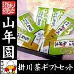日本茶 掛川茶セット 参拝茶100g×2袋・とげぬき地蔵茶100g×4袋セット 送料無料 日本茶 お茶 茶葉 お茶 お中元 父の日 ギフト プレゼント 内祝い お返し