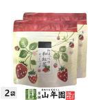 国産 静岡県産 紅ほっぺ(いちご)の和紅茶 10g(2g×5)×2袋セット ティーパック ティーバッグ いちご紅茶 ストロベリーティー