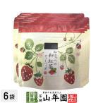 国産 静岡県産 紅ほっぺ(いちご)の和紅茶 10g(2g×5)×6袋セット ティーパック ティーバッグ いちご紅茶 ストロベリーティー