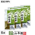 お茶 日本茶 煎茶 掛川深蒸し茶100g×6袋セット 掛川茶 送料無料