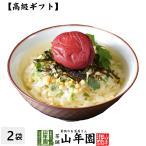 高級ギフト お茶漬けの素 梅茶漬け×2袋セット 具材 丸ごと 送料無料
