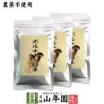 【本場イタリア産無農薬100%】 ポルチーニ茸の粉末 40g×3袋 送料無料