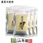 【本場イタリア産無農薬100%】 ポルチーニ茸の粉末 40g×6袋 送料無料