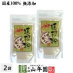 健康食品 蓮根粉 100g×2袋セット 国産 無添加 れんこん粉 レンコンパウダー 蓮根粉末 送料無料