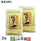 しょうが 粉末 国産 生姜の力 55g×2袋セット しょうが ショウガオール 冷え 温活 送料無料