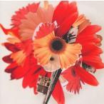 花は咲くプロジェクト/ハナハサク