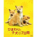 ひまわりと子犬の7日間(Blu−ray)