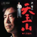 沢竜二/天王山 (MEG-CD)