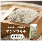 もち米 10kg 白米 新米 29年「千葉県産ヒメノモチ一等米 白米10kg」送料無料 もち お米