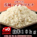 もち米 10kg 白米「令和元年産茨城マンゲツモチ 白米10kg」送料無料 もち お米