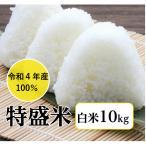 米 10kg「元年産 北海道ブレンド 特盛 白米10kg」送料無料 元年産100%ブレンド米