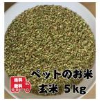 米5kg「ペット用 玄米 5kg」送料無料