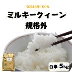 米 5kg「ミルキークイーン中米 白米 5kg」送料無料 令和2年産 100%